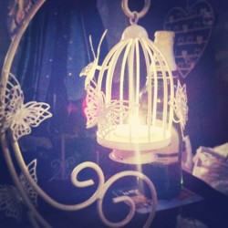 New candle holder! #candle #light #filter #butterfly #cute #pretty