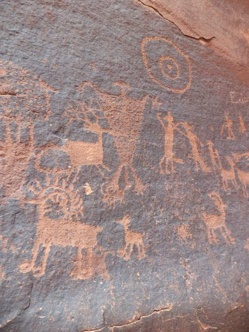 magicalannapanda:  Petroglyphs in Hidden Valley near Moab, Utah