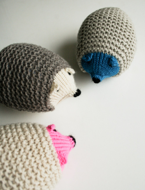 halogencat:  jessicasutton:  Knit hedgehogs  Reblogging because I like to picture my friend's faces while they squee over these.
