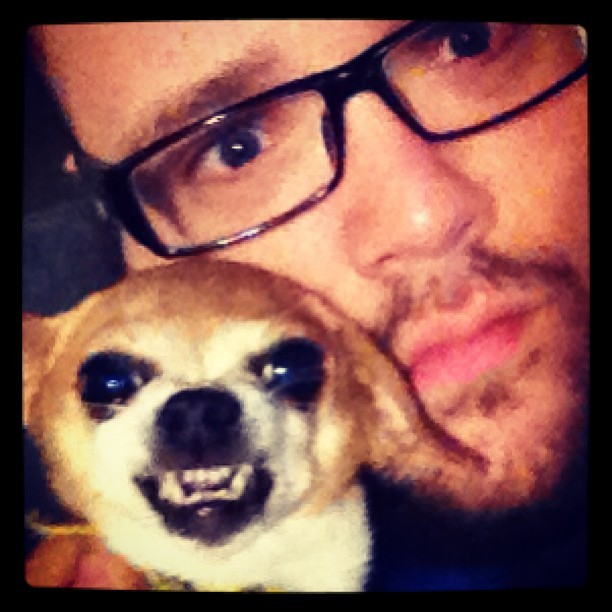 I made a friend!!! Lol! #chihuahua #dog #cantbelieveistillhaveaface
