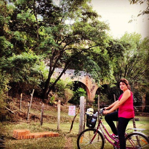 #minion #bici #bike #girl #places #morelia #michoacan #mexico #arcos #color #sky #cielo #tree #architecture #arquitectura #bicicleta #love #girl