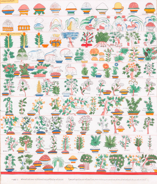 eyeburfi2:  Thangka of medicine and herbs. Via Exotic India