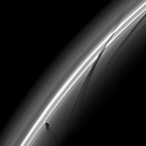 Prometheus creating Saturn ring streamers  What's causing those strange dark streaks in the rings of Saturn? Prometheus. Specifically, an orbital dance involving Saturn's moon Prometheus keeps creating unusual light and dark streamers in the F-Ring of Saturn. Now Prometheus orbits Saturn just inside the thin F-ring, but ventures into its inner edge about every 15 hours. Prometheus' gravity then pulls the closest ring particles toward the 100-km moon. The result is not only a stream of bright ring particles but also a dark ribbon where ring particles used to be. Since Prometheus orbits faster than the ring particles, the icy moon pulls out a new streamer every pass. Sometimes, several streamers or kinks are visible at once.  Image credit: Cassini Imaging Team, ISS, JPL, ESA, NASA