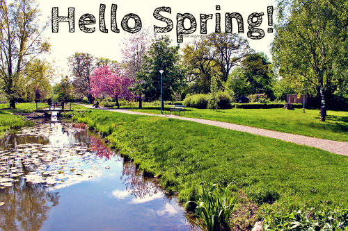Hello Spring! Photo taken and edited by me, Sara Winberg.