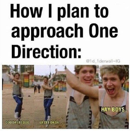 How I plan to approach One Direction
