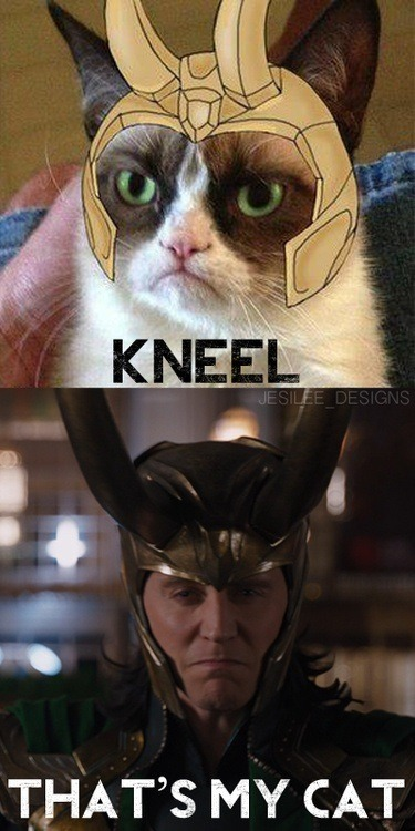 filtersareforcoffee:  KNEEL!!