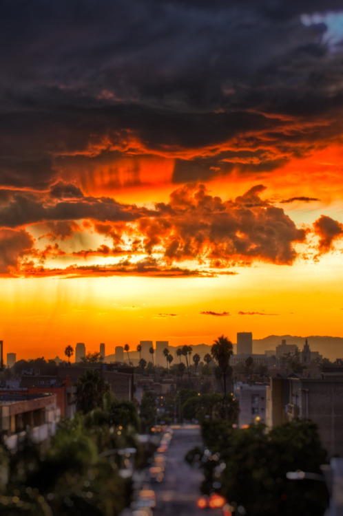 Sunset After the Rain - Los Angeles, CA  by Mr Gold