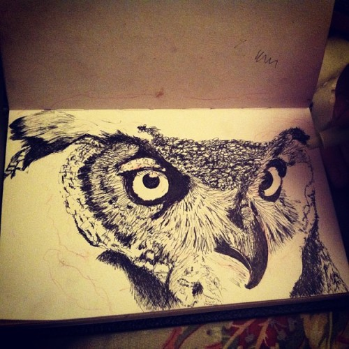 I am slower than freaking molasses. Juxtaposing birds of prey with 005 microns only…weeeee #progress #florida #floridaart #floridaartist #tampaart #tampa #stpete #stpetersburg #dtsp #owl #freehand #greathornedowl #birdifprey #realism #rendering #sketch #drawing #artlife