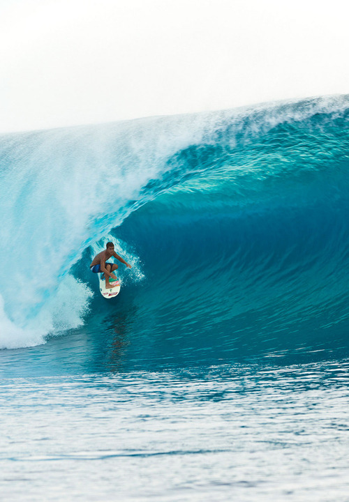 the-surf-blowg:
