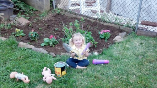 little chicky with her feet stained green helping daddy garden. Together we got a whole bunch of flowers planted!