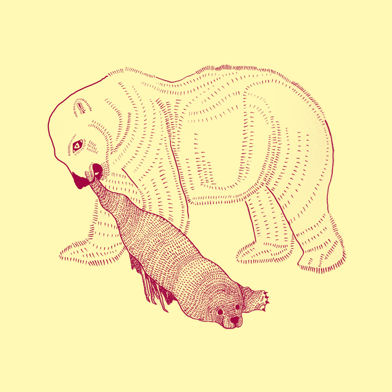 polar bear vs. seal. drawing by geirarne/ballad of the dyeing dart frog 2013