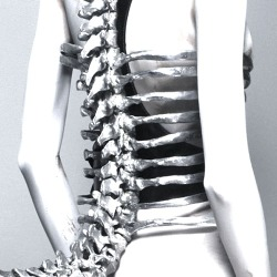 neuromaencer:  pine Corset by Shaun Leane for Alexander McQueen, S/S 1998, photographed by Sølve Sundsbø