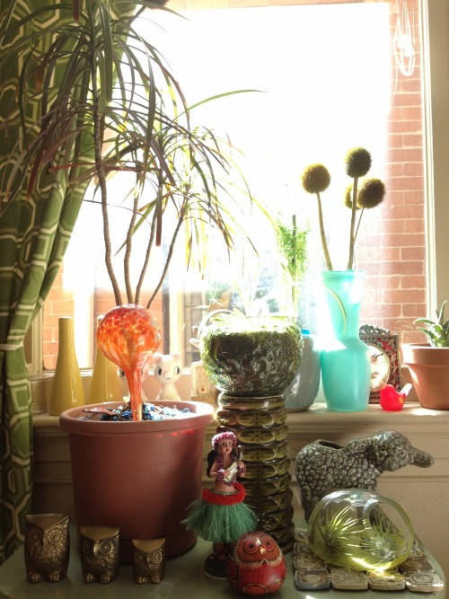 My collection: my sunny kitchen windowsill.