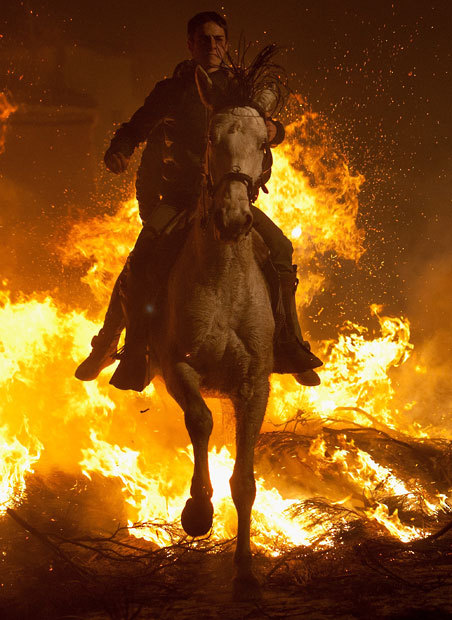 creepicrawlies:  A man rides a horse through a bonfire in San Bartolome de Pinares, Spain, in honour of Saint Anthony, the patron saint of animals Picture: Pablo Blazquez Dominguez/Getty Images cool