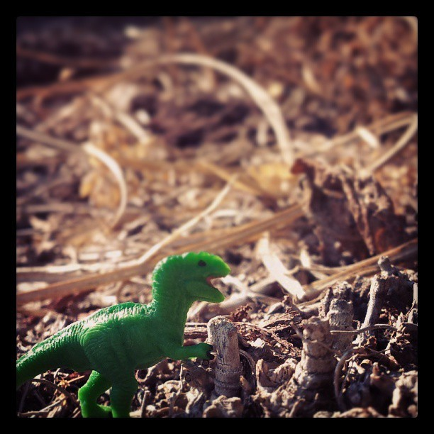 #Tiny #dinosaur #toy #t-rex #cute