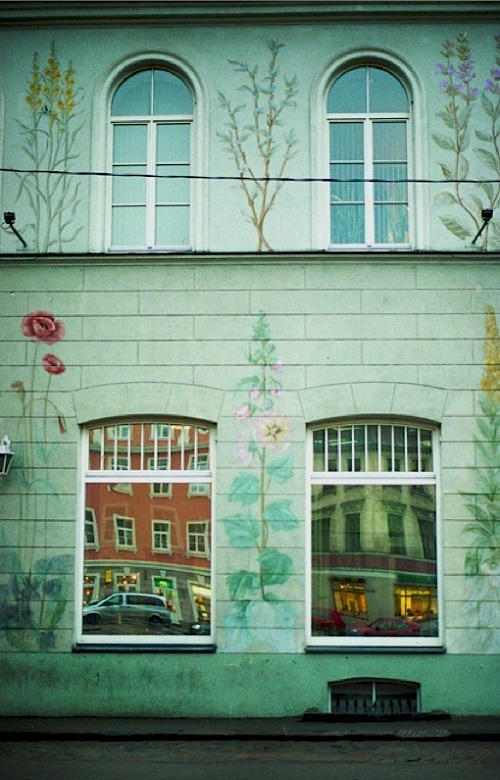 | ♕ |  Mural flowers in Tallinn, Estonia  | by © Kseniya Segina