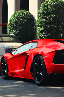 6speedhaven:  Matte Red Aventador