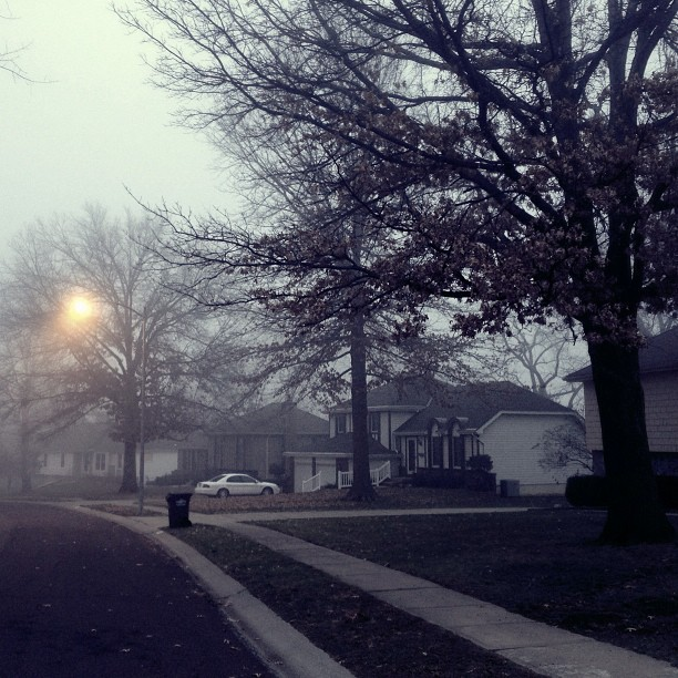 Some fog this morning 12/16/2012
