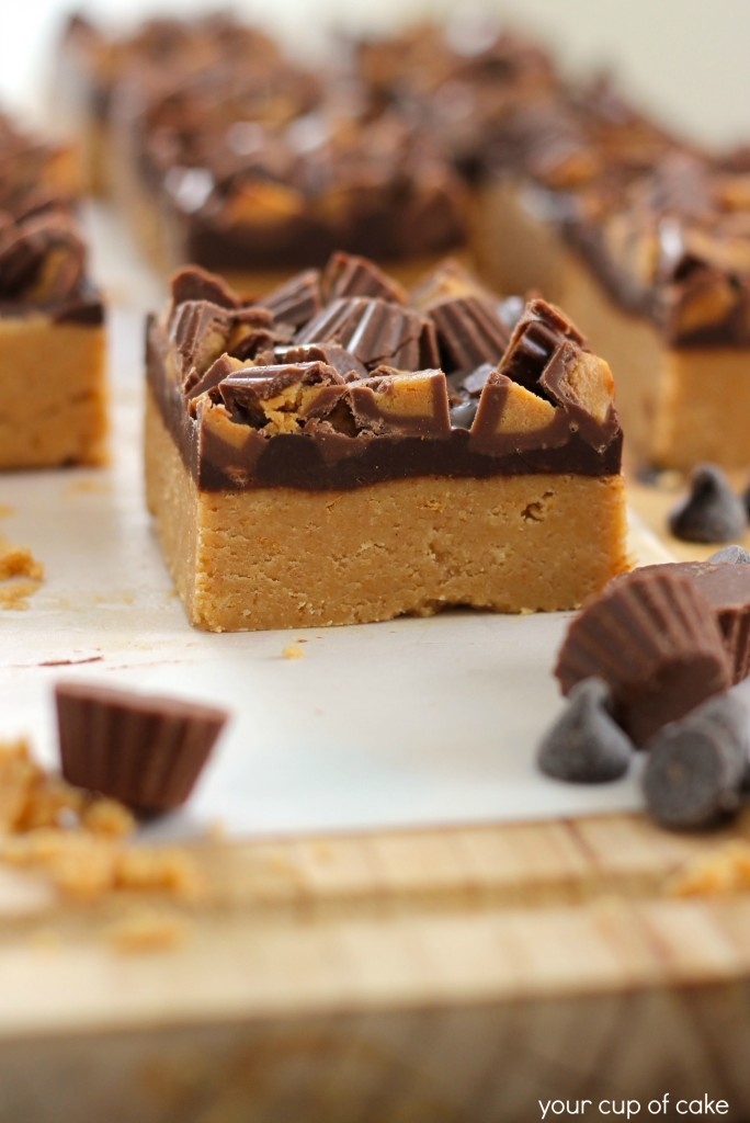gastrogirl:  no bake peanut butter chocolate bars.