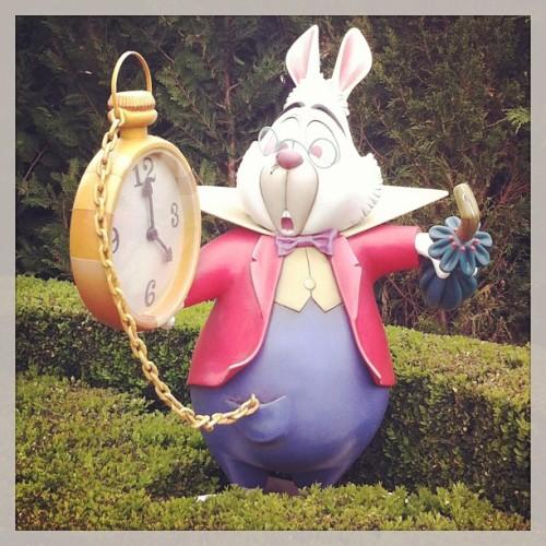 #disneylandparis #alicewonderland