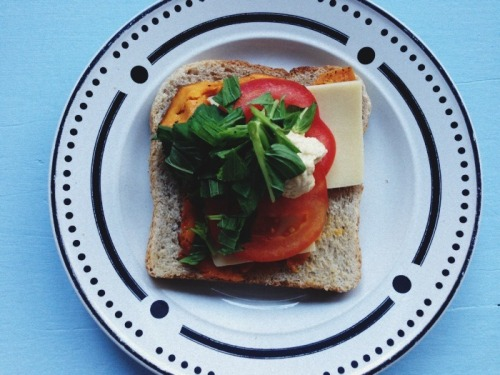 Open sandwich: mashed roast pumpkin, gruyere cheese, tomato, hummus and mint.