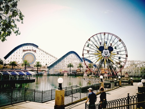 The Happiest Place On Earth. #Disneyland #Disney #MagicKingdom #MickeyMouse – View on Path.