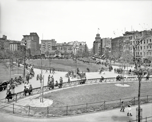 "via SHORPY: Circa 1905. ""Mulberry Bend, New York City."" The name was changed to Columbus Park in 1911. 8x10 glass negative, Detroit Publishing Co."
