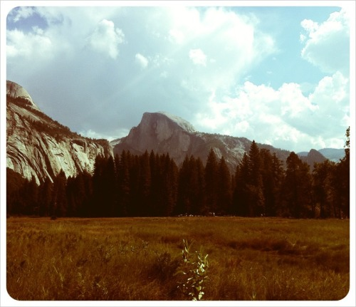 rootsgrowdeeper:  djmase:  Halfdome: Win.  climbed it when I was 4.always going back.