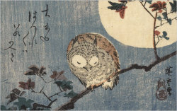 Hiroshige (1797-1858), Owl on a Maple Branch in the Full Moon, 1832.