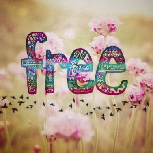 eltrendelasmoscas:  #Free #Love #Freedom #Libertad #Amor #All_is_love