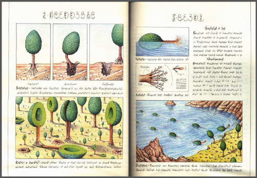 ecmajor:  Codex Seraphinianus. Someday, i will have an actual copy of this book. …if i ever get rich, anyway. I have a pdf of it, so at least i can behold its weird wonders :D But it's not quite the same as having the real thing.  ^Same