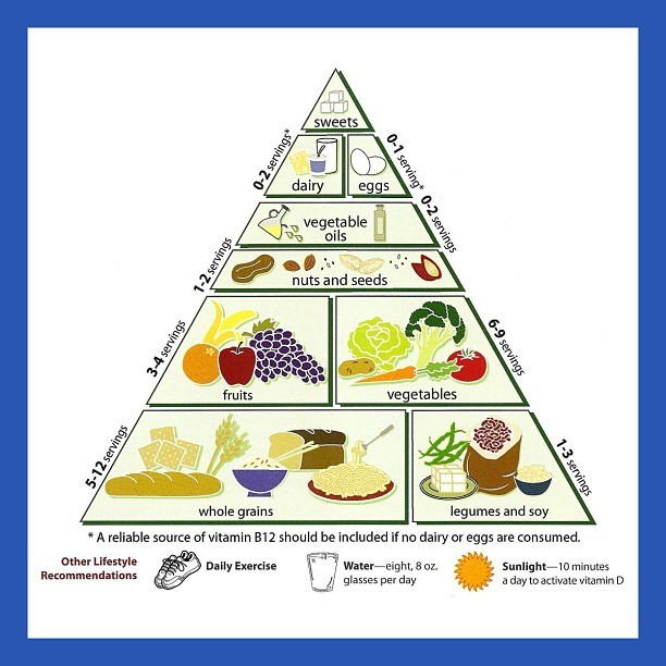 FOOD FRIDAY | Everyone is familiar with the USDA's food pyramid, which is a guide on how much of each food group one should consume. The base of the pyramid contains food that should be included in our diet the most and the top of the pyramid contains food that should be consumed sparingly. For those of us who are vegetarians, vegans, or pescatarians, we have to make certain adjustments to meet our needs and still maintain good nutrition at the same time! To make sure you are on track, check out this vegetarian food pyramid! One major difference between the traditional food pyramid and this one is the increase in fruit and vegetable servings, with some recommending 9-13 servings daily. Stay fit and fabulous no matter what your diet is! #prettygirlssweat #pgs #nutrition #foodpyramids #vegetarian #vegan #pescatarian #diet #exercise