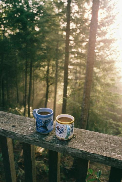 underthecarolinamoon:  tearthisflesh:  You and me and coffee in the mornings, wrapped up in blankets with each other on the porch watching the sun rise through the trees as the light graces our drowsy faces. It kisses us, almost as gently and sweetly as we kiss one another. I can see us doing devotionals and journaling together as the noises of the forest begin to stir and build into a beautiful chorus of birds and growth and love overflowing from two hearts made one.  ^Can I find someone like this, please?