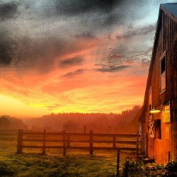cloverbellfarm:  Good Morning Tennessee! #tbt #tennesseefarm #cloverbellfarm #barnlove. #barnporn (at Clover Bell Farm)