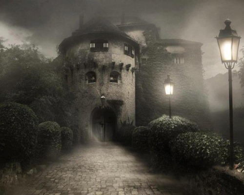 Foggy Night, Bran Castle, Transylvania photo via besttravelphotos