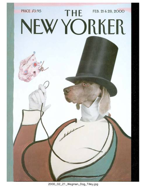 this is the only photo ever published on the cover of The New Yorker. but then it's by the great cartoonist, william Wegman.