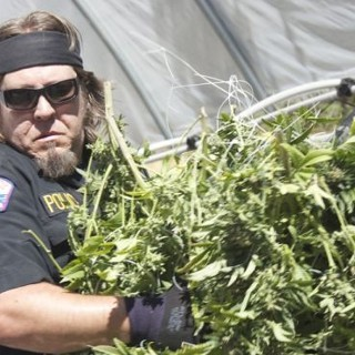 """I'm watching Pot Cops    """"Boo. Fuck this show.""""                      Check-in to               Pot Cops on tvtag"""
