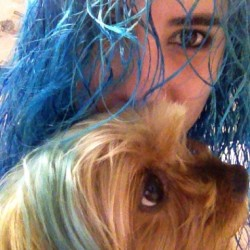 The dog didn't escape #newhair #dog #nofilter #bluehair