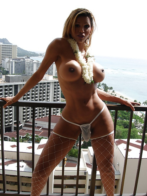 weloveshemaleporn:  #Shemale #Tranny Sexy Shemale N. 1445 www.bangemall.com/videos/transsexual.html follow us network.hugester.com for more pics and videos