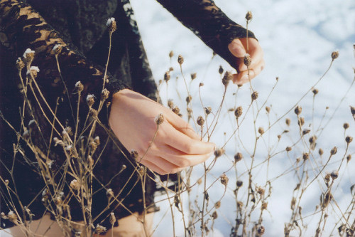 floemist:  splinters by lydiagreenaway on Flickr.