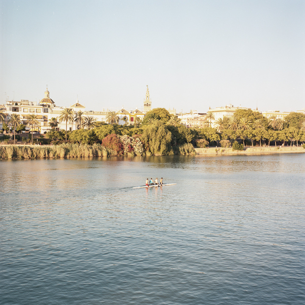 Rowers at sunset. Sevilla, Spain.
