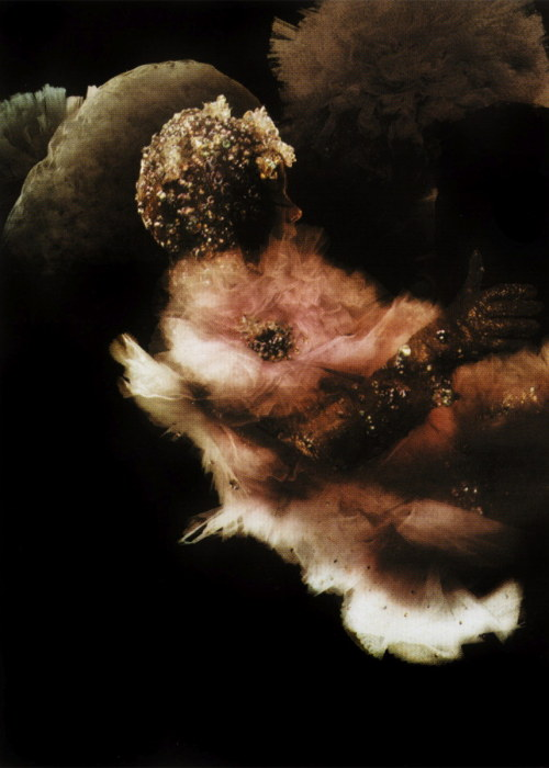 bjorkfr:  Warren du Preez & Nick Thornton-Jones (2001)nouvelle photo