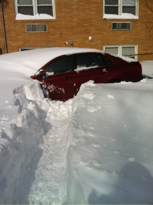 My car, Saturday morning.