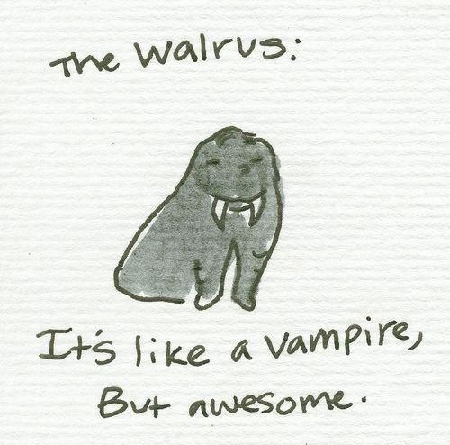 The Walrus: It's like a vampire, but awesome.
