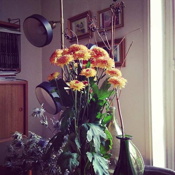 #colorful #flowers #home #Paris