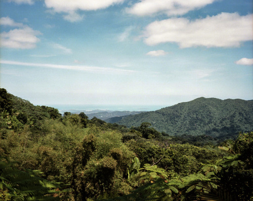 locationiseverything:  lookout from a spot in el yunque national forest.  no one was around me and sean.  only thing that surrounded us was the plant life, whatever organisms live in a rainforest, and the warning signs for the rabid mongooses that roam around this area.  you can see the ocean in the distance.  for the day and night, this was home for me and sean.  it was a great night of sleep, falling asleep to the sound of the rainforest and rushing water. ______________________________________________________________________ march 14th, 2013 el yunque national forest, puerto rico mamiya 7ii // 80mm // kodak portra 160