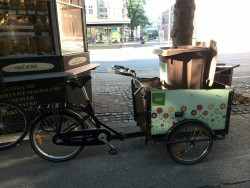 Bike Center Maribor cargo bike from maribor