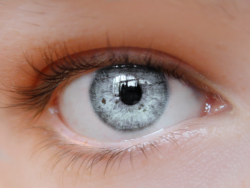 Semi Transparent Eye (eye changes to colour of your blog)