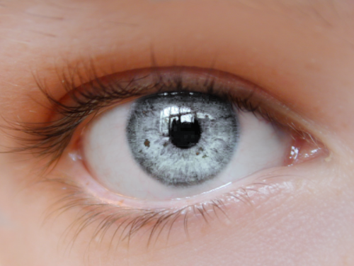 totallytransparent:  Semi Transparent Eye (eye changes to colour of your blog)Made by Totally Transparent