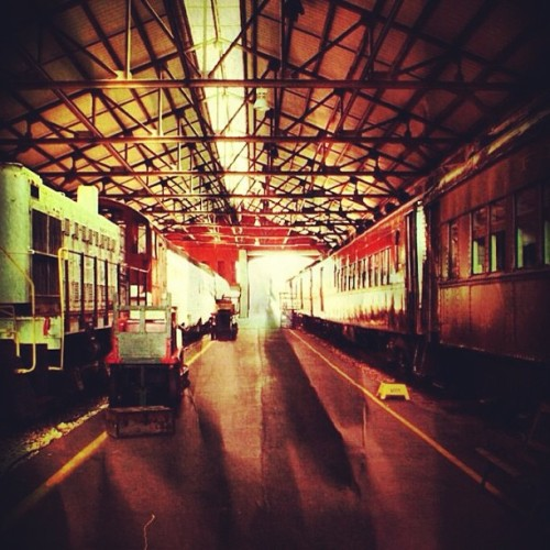 alcoholinducedlife:  #train #art #photography